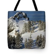 Dramatic View Of The Sprawling Tote Bag