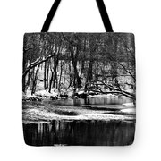 Dramatic Waterway Tote Bag