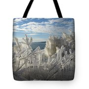 Draped In Icy Beauty Tote Bag