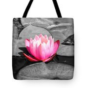 Dream Lily Tote Bag by Mariola Bitner