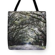 Dream World Tote Bag by Carol Groenen