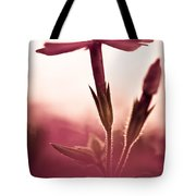 Dreaming In A Setting Sun Tote Bag