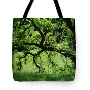 Dreaming Under The Old Oak Tote Bag