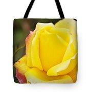 Dream's Come True Rose By Walter Herrit  Tote Bag