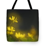Dreams Daisies Tote Bag