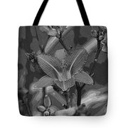 Dreams In Black And White Tote Bag