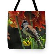Dreams Of Autumn Tote Bag