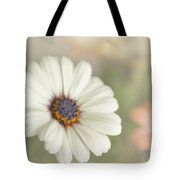 Dreams Of Spring Tote Bag
