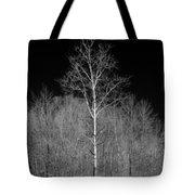 Dreamscape Tote Bag by Luke Moore