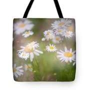 Dreamy Daisies On Summer Meadow Tote Bag