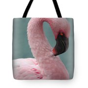Dreamy Pink Flamingo Tote Bag