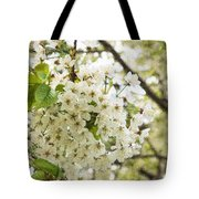 Dreamy White Cherry Blossoms - Impressions Of Spring Tote Bag