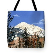 Dressed For Winter Tote Bag