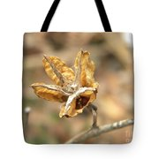 Dried Seed Tote Bag