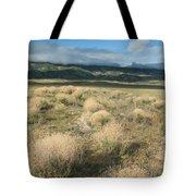 Dried Shrubs In Late Winter Carrizo Tote Bag