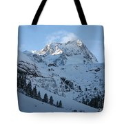 Drifting Snow Tote Bag