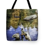 Driftwood And Reflections Tote Bag