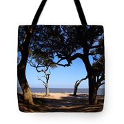 Driftwood Beach Pathway Tote Bag