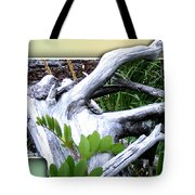 Driftwood Escape Tote Bag