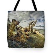 Driftwood On Rialto Beach Tote Bag