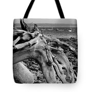 Driftwood On Rocky Beach Tote Bag