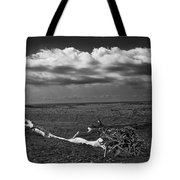 Driftwood On The Beach At Whitefish Point Tote Bag