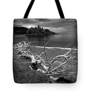 Driftwood On The Shore Near Wawa Ontario Canada Tote Bag