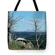 Gnarled Trees And Divide Mountain Tote Bag
