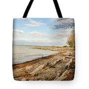 Driftwood On Shore Tote Bag