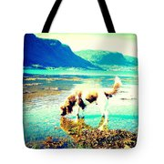 Springer Spaniel Drinking Water From The Big Blue Sea  Tote Bag