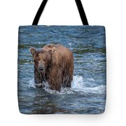 Dripping Grizzly Tote Bag