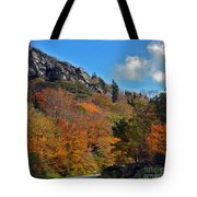 Driving Through Autumn's Beauty   Tote Bag