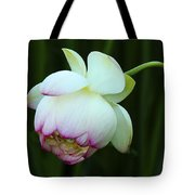 Drooping Lotus Tote Bag