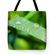 Drop Of Rainwater On A Grass Blade Tote Bag