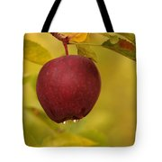 Droplets From A Red Apple   Tote Bag