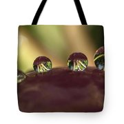 Droplets On An Apple Tote Bag