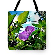 Droplets On Petal Tote Bag