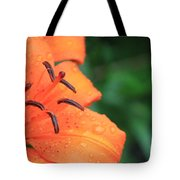 Droplets On Tiger Lily Tote Bag