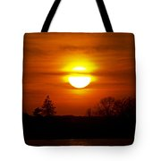 Dropping In Tote Bag