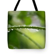 Drops In Line Tote Bag