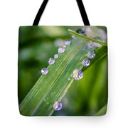 Drops On Grass Tote Bag