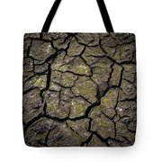 Drought Tote Bag
