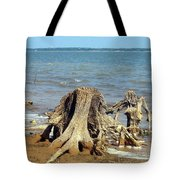 Drought In Texas Tote Bag