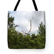 Druid Dance Tote Bag