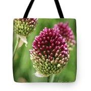 Drumstick Allium Tote Bag