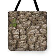 Dry Cracked Mud  Tote Bag