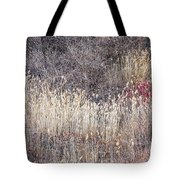 Dry Grasses And Bare Trees In Winter Forest Tote Bag by Elena Elisseeva