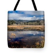 Dry Lagoon In Winter Panorama Tote Bag