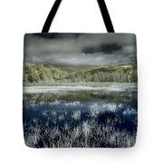 Dry Lagoon Winter Tote Bag