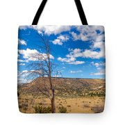 Dry Landscape Tote Bag
